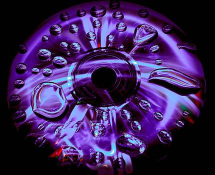 Wet Music by Gary Rice