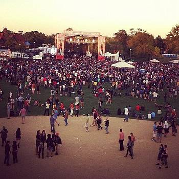 Wheres's Waldo? #riotfest by Rachael Sansing