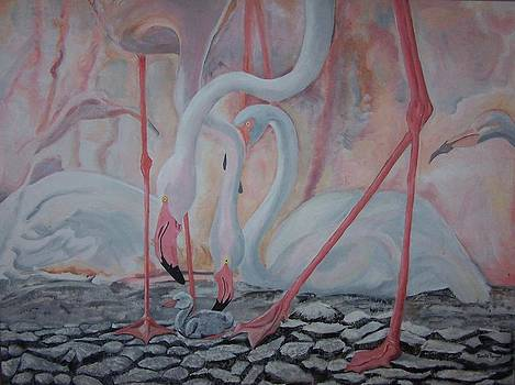 White African Flamingos by Renate Pampel