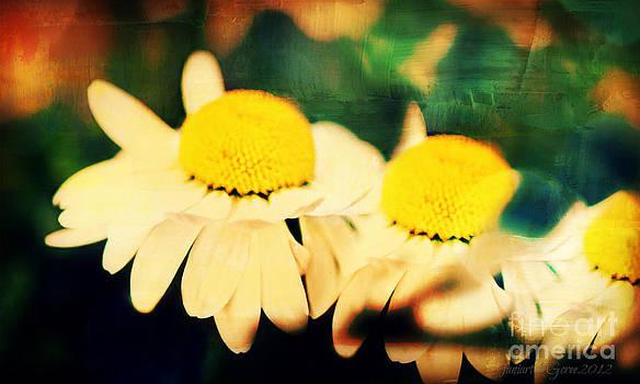 White and Yellow Flow by Fania Simon