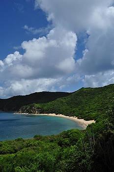 White Bay Beach 2 by Dave Duke