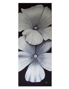 White Beauties by Debra CerboneSteiner