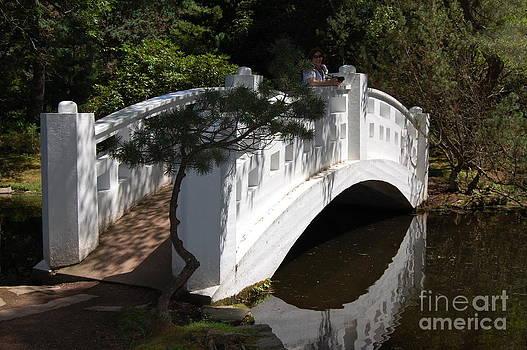 White Bridge by Kathy Bradley