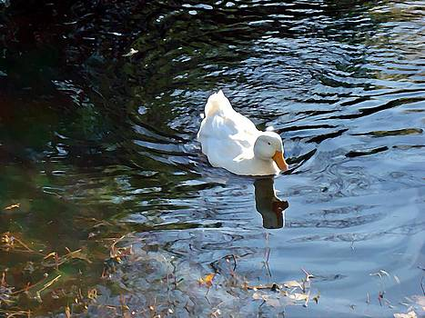 White Duck by Joan Meyland