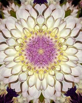 White Kaleidoscope  by Cathie Tyler
