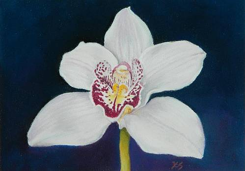 White Orchid by Xenia Sease