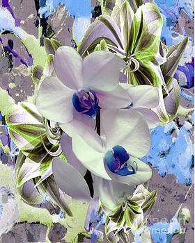 White Orchids and a touch of Blue by Doris Wood