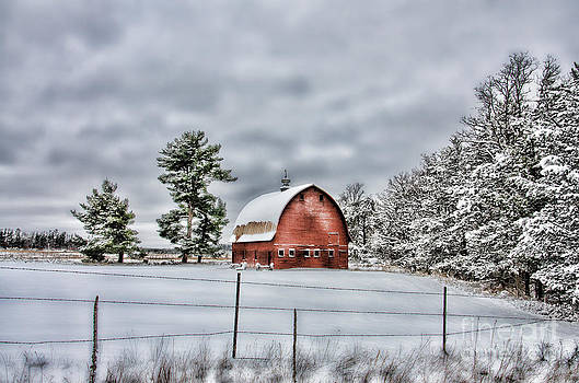 White Pine Barn by Whispering Feather Gallery
