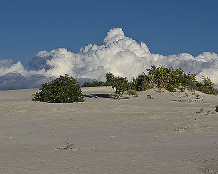 White Sands After the Storm by Bob Bailey
