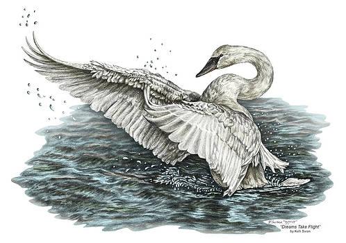 Kelli Swan - White Swan - Dreams Take Flight-tinted