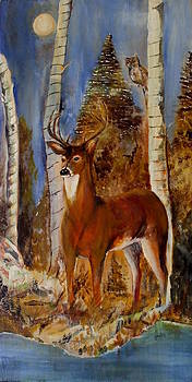 Amalia Jonas - White Tailed Deer in a Forest