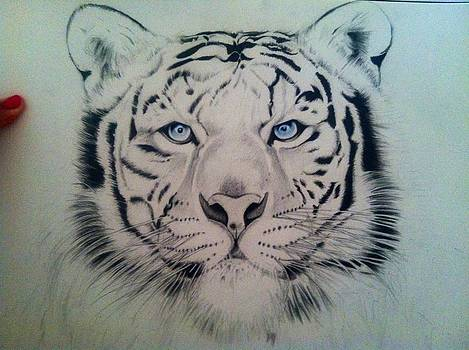 White Tiger by Maritza Montnegro