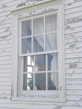 Peggy  McDonald - White Window