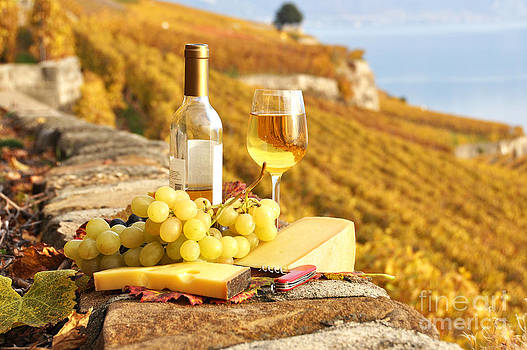 White wine and grapes by Alexander Chaikin