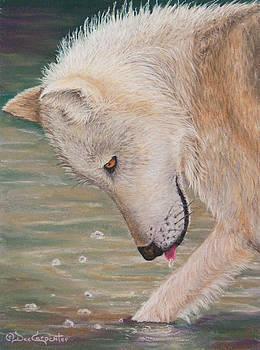 Dee Carpenter - White Wolf