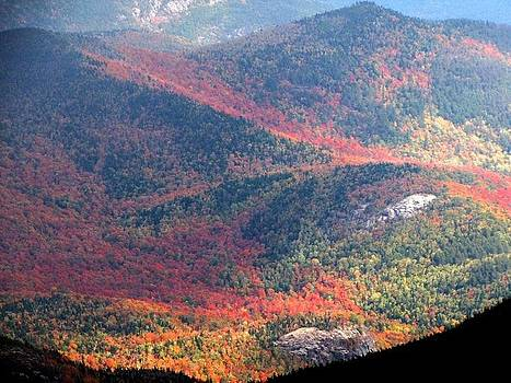 Whiteface Mt. View by Dushawn Williams