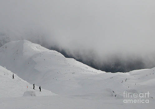 Whiteout Whistler by Don F  Bradford