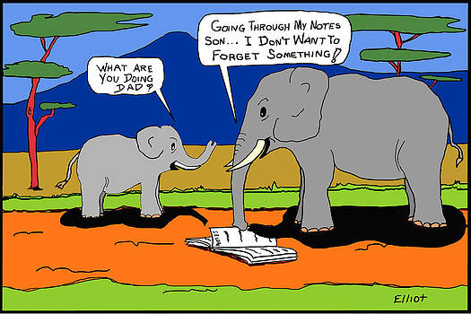 Why Elephants Never Forget by Noel Elliot