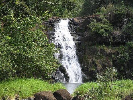 Wiamea Falls by Brandon Radford