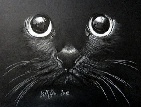 Wide Eyed Cat by Skyrah J Kelly