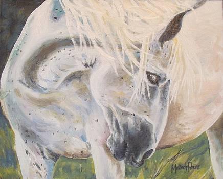 Wild Blush by Melody Perez