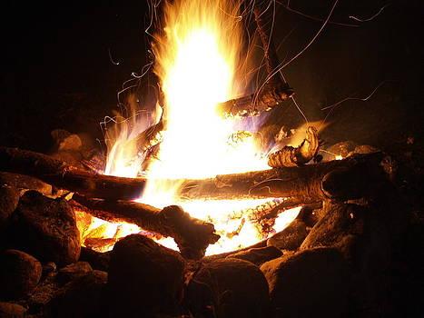 Wild Flame by Jessica Yudis