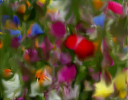 Wild Flowers Abstract Study 2 by Susan  Solak