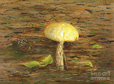 Wild Mushroom on the Forest Floor by Judy Filarecki