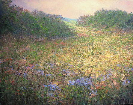 Wildflowers by Stephen Howell