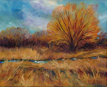 Peggy Wilson - Willows and Wetlands