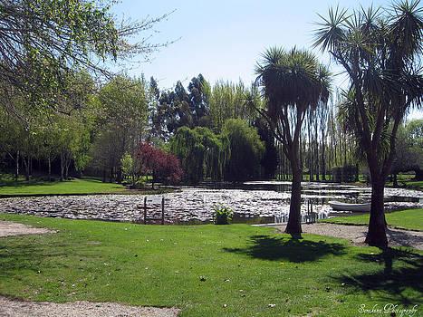 Rachael Shaw - Wilson Mill Gardens 1