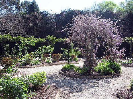 Rachael Shaw - Wilson Mill Gardens 11
