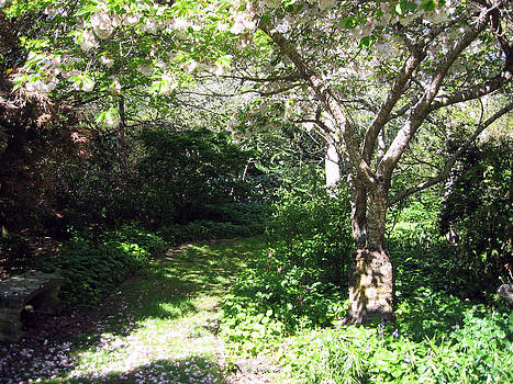 Rachael Shaw - Wilson Mill Gardens 13