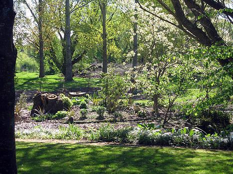 Rachael Shaw - Wilson Mill Gardens 14