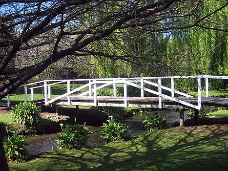 Rachael Shaw - Wilson Mill Gardens 15