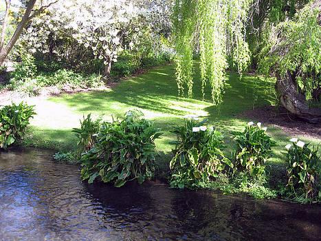 Rachael Shaw - Wilson Mill Gardens 16