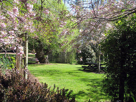 Rachael Shaw - Wilson Mill Gardens 8