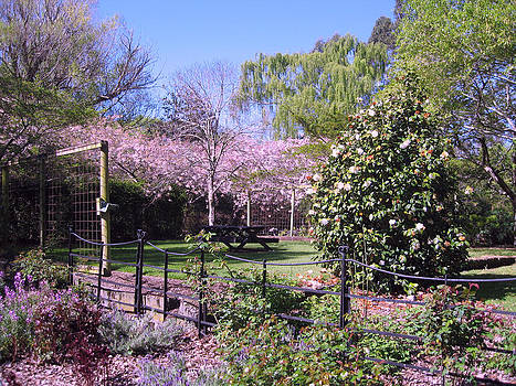 Rachael Shaw - Wilson Mill Gardens 9