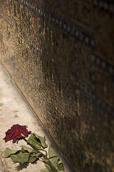 Wilting Rose. by Alex Hinds