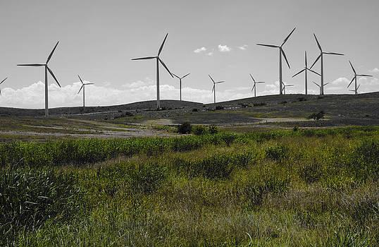 Ricky Barnard - Wind Farm IV