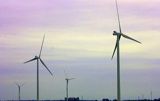 Windmill Farmland by Sharon Spade - Kingsbury