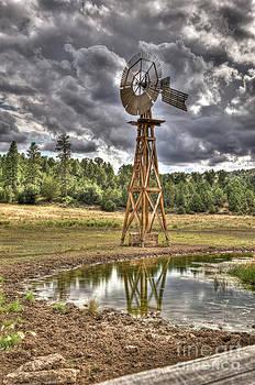 Rod Wiens - Windmill