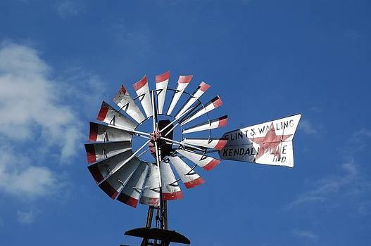 Windmill by Wanda Jesfield