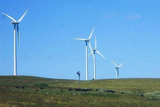 Windmills old and new by Vicky Mowrer