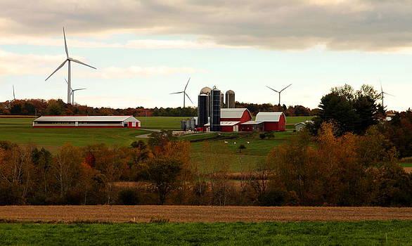 Windmills On The Farmland by Beverly Kobee