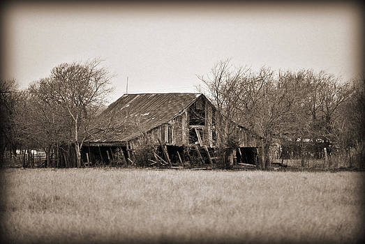 Windom Barn III by Lisa Moore