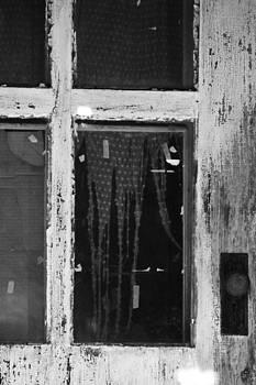 Window in the Door by Sasha Wolfe