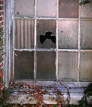 Window Pain by Jaye Crist