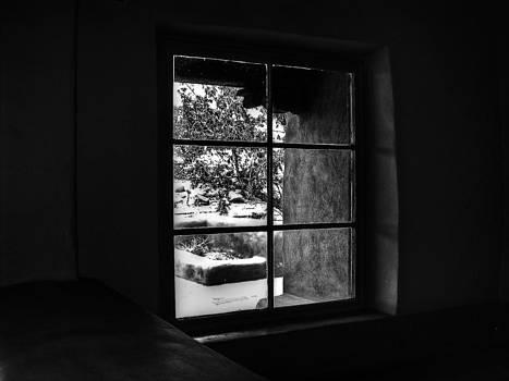 Frank SantAgata - Window Wonders