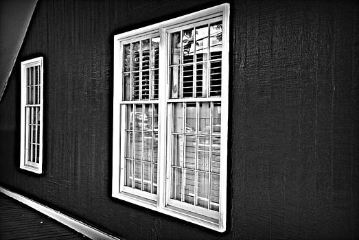Marilyn Wilson - Windows on Maui BW